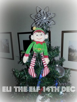 Eli The Elf 14th Dec