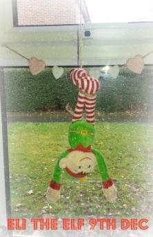 Eli The Elf 9th Dec