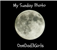 onedad3girls Silent Sunday #28
